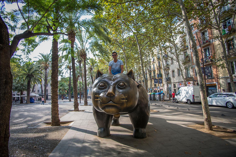 El Gato del Raval, The Raval Cat; The Raval Cat Barcelona