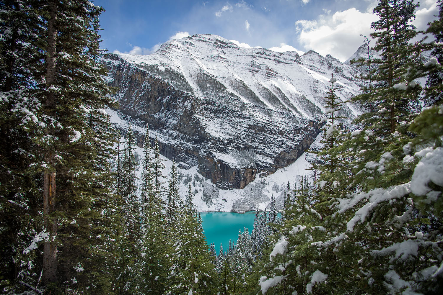 Lake Louise Tourism, Lake Louise, banff, things to do in lake louise