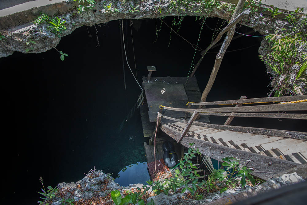 La Noria; La Noria cenote; La Noria Mexico; cenote La Noria; cenote in mexico; cenotes in mexico