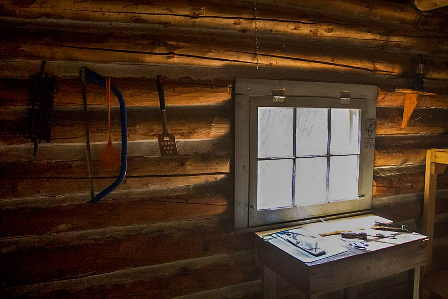 ALGONQUIN, ALGONQUIN CAMPING, ONTARIO ROAD TRIP, CANADA, ONTARIO WILDLIFE, ranger cabin in algonquin, canadian fall, north of ontario, Bissett Creek cabin